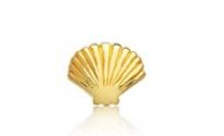 Storie Gold Shell Charm