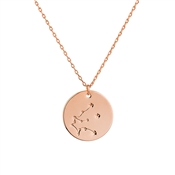 Dirty Ruby Rose Gold Plated Aquarius Necklace