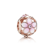 PANDORA Rose Magnolia Bloom Charm