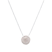 August Woods Silver Brown Circle Necklace