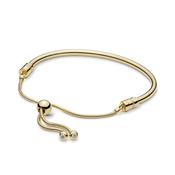Pandora Moments Shine Sliding Bangle