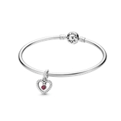Pandora January Birthstone Gift Set