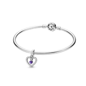 Pandora February Birthstone Gift Set