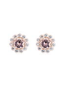 Ted Baker Rose Gold Pink Crystal Daisy Earrings