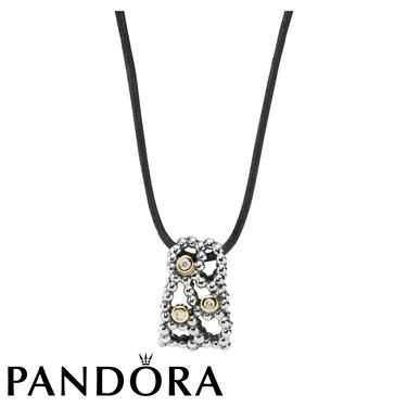 Pandora Delight Necklace