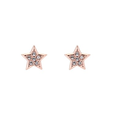 Ted Baker Rose Gold Safire Star Earring  - Click to view larger image