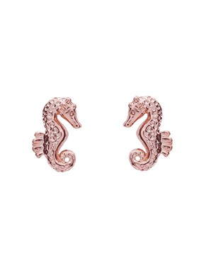 Ted Baker Rose Gold Seahorse Stud Earrings  - Click to view larger image